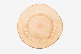 Abatec - Magia drewna